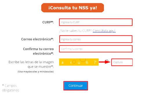 Consultar NSS